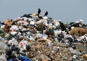Beijings Müll stinkt zum Himmel: Zivilgesellschaft gegen Müllverbrennung in China
