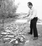 """Chinesischer Umweltschützer """"Zhang Zhengxiang"""""""