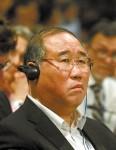 Rede des Delegierten Xie Zhenhua
