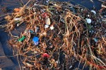 Immer mehr Müll landet in den Ozeanen © Kevin Krejci