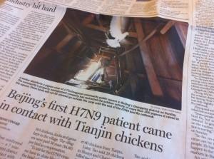 Immer mehr Menschen in China infizieren sich mit dem gefährlichen Grippevirus © Oliver Radtke