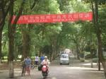 Ausgezeichnete Noten sind Ziel des chinesischen Bildungssystems. Auf dem Plakat gratuliert die Schule den besten Prüflingen des Gaokao* © Vmenkov, Wikimedia Commons