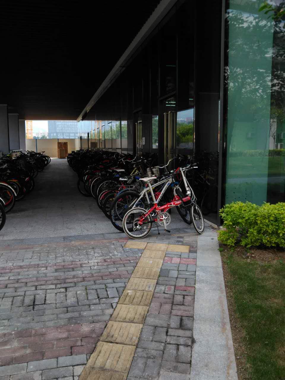 Blindenweg auf dem Campus der SUSTC, Shenzhen. Bild: Florian Jung, 2016.