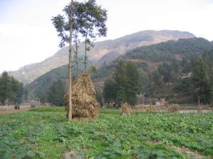 Landwirtschaft in Südwestchina (c) S. Elbern